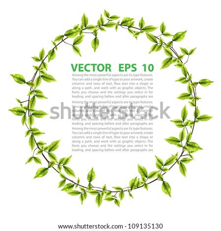 Green leaves round frame. Vector background