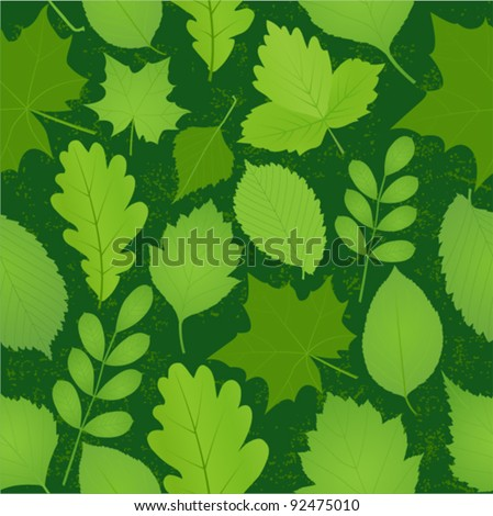 green leaves seamless pattern. Vector image