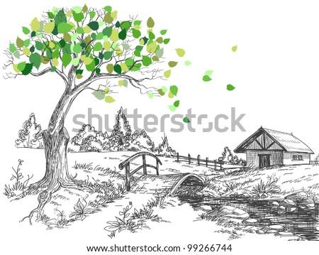 green leaves tree in spring