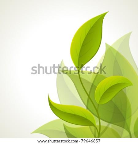 Green leaves. Vector background Eps 10.