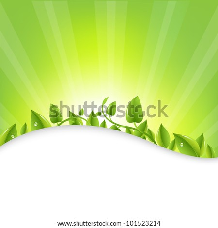 green leaves with sunburst  and