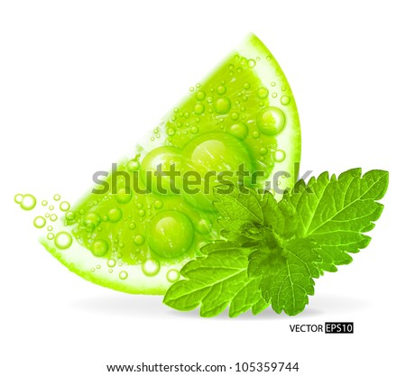 Green lime with water splash and mint leaf isolated on white background. Vector illustration.
