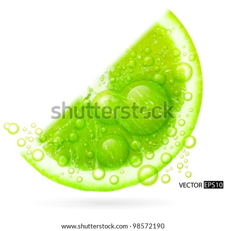 Green lime with water splash isolated on white background. Vector illustration.