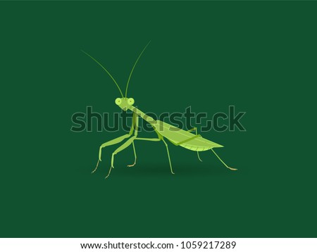 green mantis on green