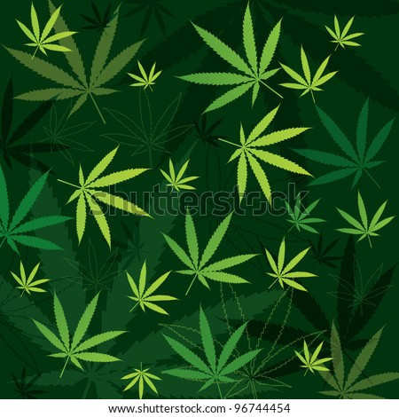 green marijuana background with