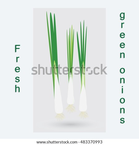 green onion abstract art