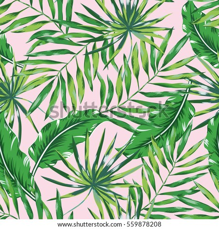 green palm leaves on the pink