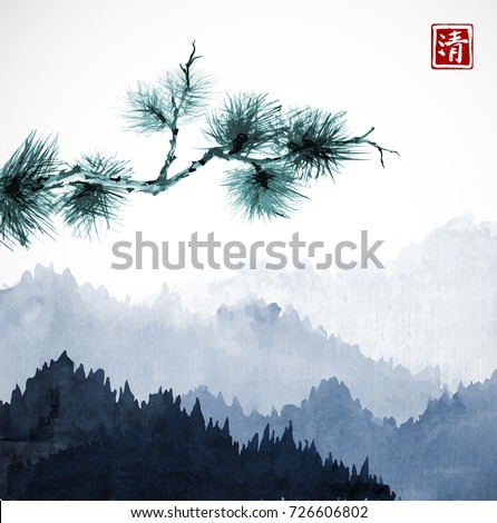 green pine tree branch and blue