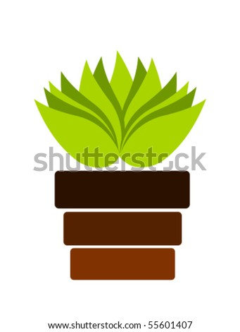 Green plant in pot. Vector illustration