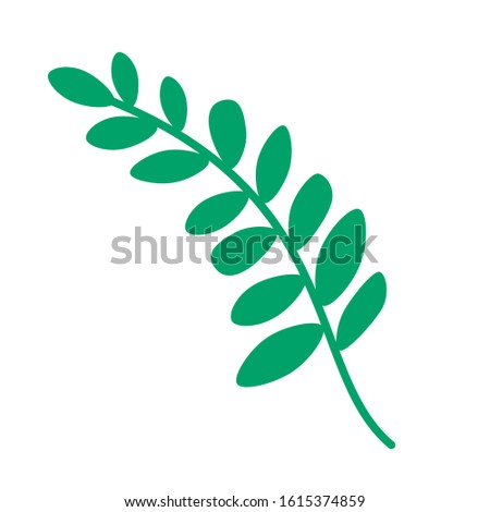 Green plant. Vector plant. Plant with leaves. Isolated plant on white background.