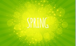 Green Shining Spring Background with Burst, Flowers and Place for Text. Seasonal Space. Vector illustration