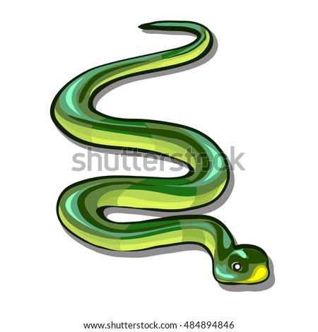Stock Photo Green snake isolated on a white background. Vector illustration.