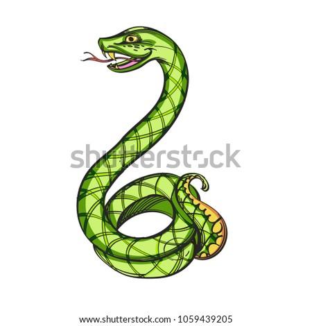 Stock Photo Green snake. Vector illustration isolated on white background.