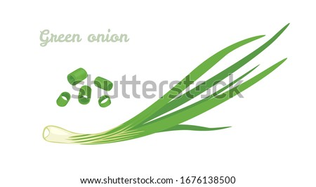 Green spring onions isolated on white background. Vector Chopped chives. Illustration of fresh cut green onion. Icon in cartoon flat style. Foto stock ©