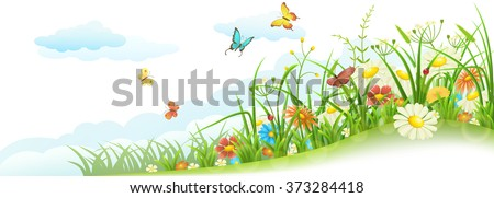 green spring summer meadow with
