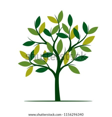 Green Spring Tree. Vector Illustration. Plant in garden.