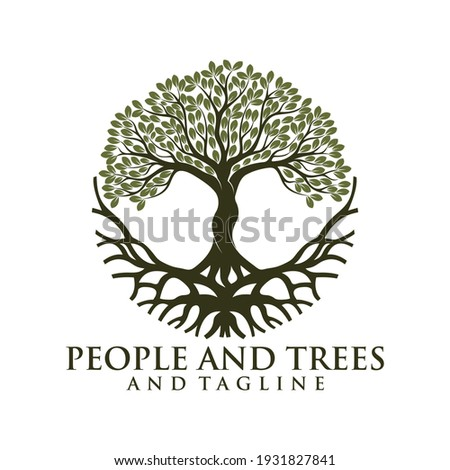 green spring tree with female face and roots on white background, vector, Abstract Human tree logo. Unique Tree Vector illustration with circle and abstract woman shape.