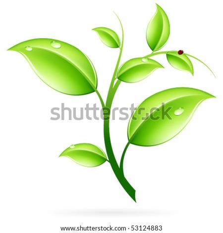 вахтовым методом веточка растения которая символизирует мир замыкания электрических