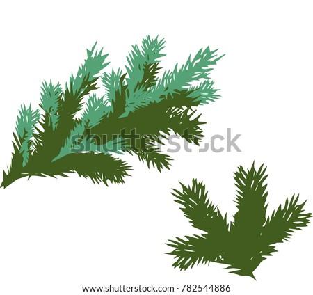 green spruce branch #782544886