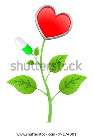 green stem with leaves, pills, and a heart-shaped fruit