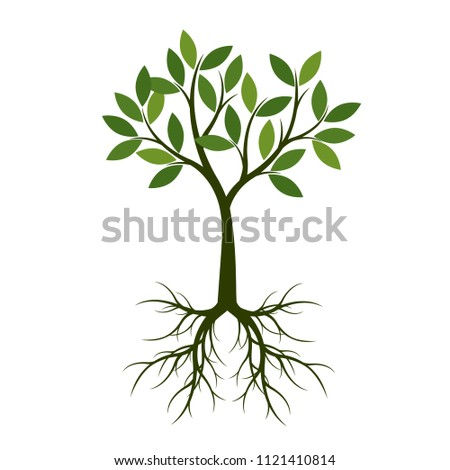 Green summer Tree with Root. Vector Illustration. Plant in garden.