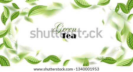 green tea leaves. vector background with tea leaves