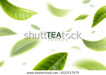 Green tea. Tea leaves whirl in the air. Tea leaves in motion on a white background. Element for design, advertising, packaging of tea products Vector illustration.