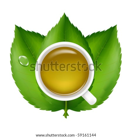 Green Tea With Fresh Green Leaves, Isolated On White Background, Vector Illustration