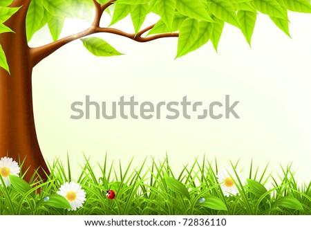 green tree frame  10eps