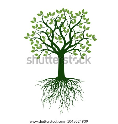 Green Tree with Leaves and Roots. Decoration card. Vector Illustration and graphic design.