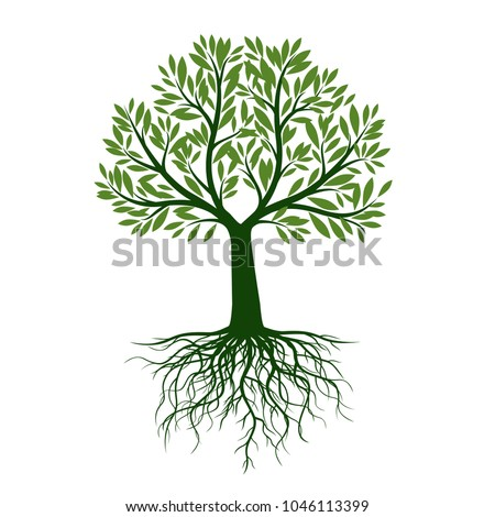 Green Tree with Leaves and Roots. Floral style. Vector Illustration and graphic design.