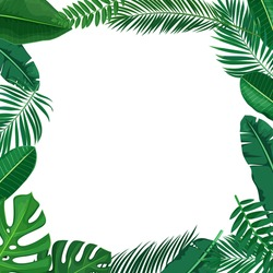 Green tropical leaves frame. Jungle exotic leaf border philodendron, areca palm, royal fern, plumeria copyspace. Illustration for summer tropical paradise advertising design vacation.