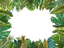 Green tropical leaves frame. Nature leaf border, summer vacation and jungle plants. Monstera and exotic palm tree leafs vector illustration. Palm exotic leaf, tropical floral copyspace