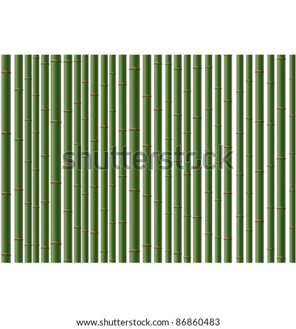 Green vector  bamboo background. Can be scaled  without problems and quality loss.