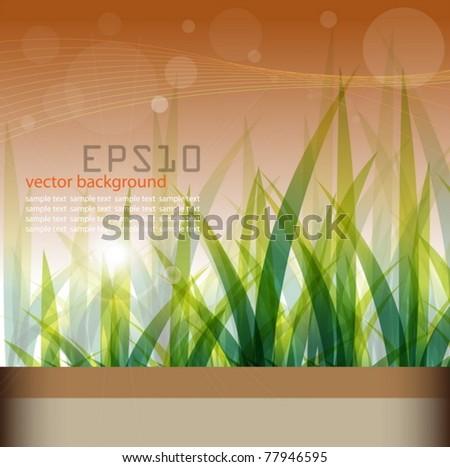 green vector grass background