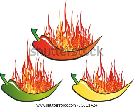 Green, yellow and red hot chili peppers  isolated in white background. Vector illustration
