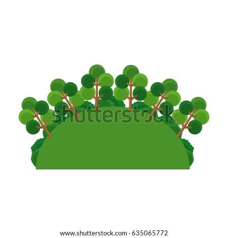 greenery  tree forest landscape