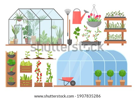 Greenhouse flower plant vegetable cultivation vector illustration set. Cartoon glasshouses for planting and growing natural organic agricultural products, garden equipment and tools isolated on white ストックフォト ©