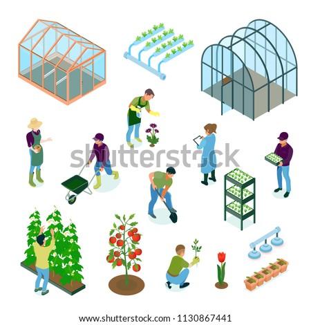 Greenhouse Isometric Set  Сток-фото ©