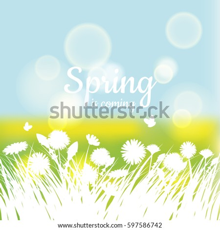 greeting card spring background