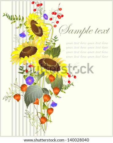 Greeting card with a sunflower.Beautiful decorative card with flowers sunflower           Illustration sunflower.