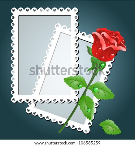 Greeting card with white frame and red rose