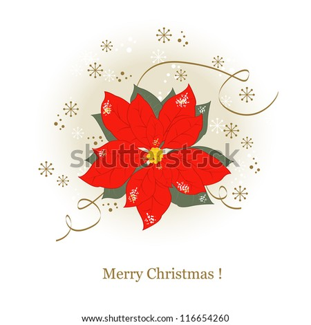 Greeting Christmas card  with Christmas flowers