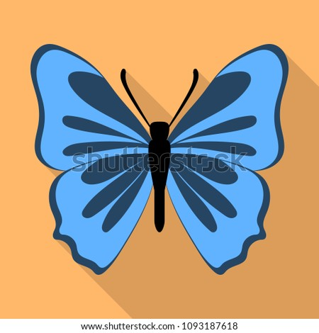 grey blue butterfly icon flat