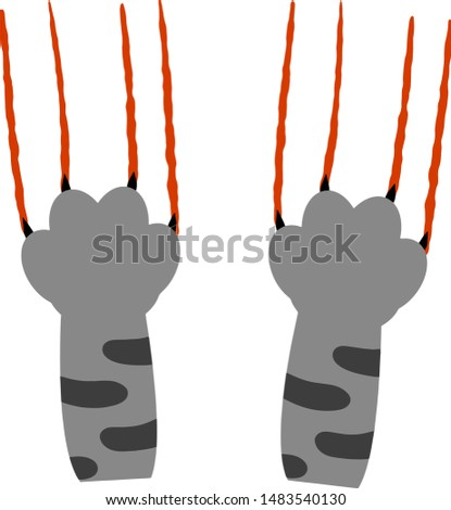 grey cat foot scratch with