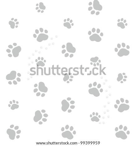 grey cat footprints on white