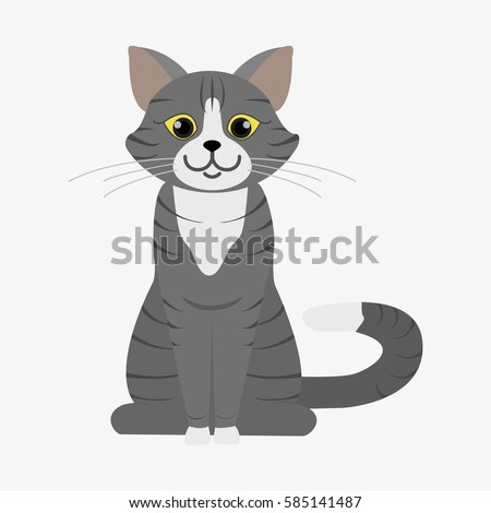 grey cat with stripes and