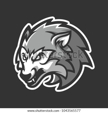 grey wolf dog with angry face