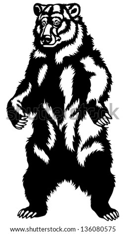 grizzly bear black and white