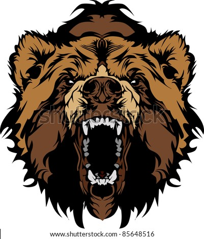grizzly bear mascot head vector